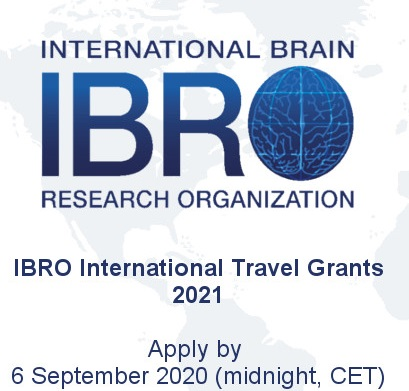 Get up to €1,800 for Neuroscientists in the IBRO International Travel Grant Program 2021