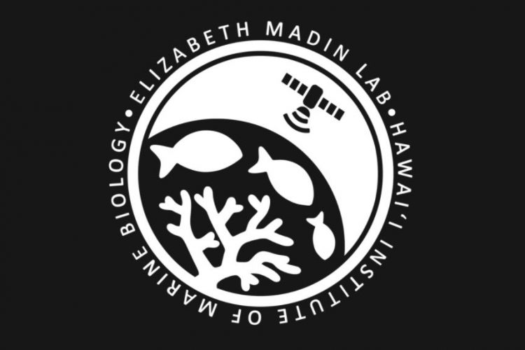 Fully-funded Postdoctoral Fellowship for Ph.D. Scholars in the Elizabeth Madin Lab Post-Doctoral Research Fellowship in Quantitative Conservation Ecology and Machine Learning 2021/2022