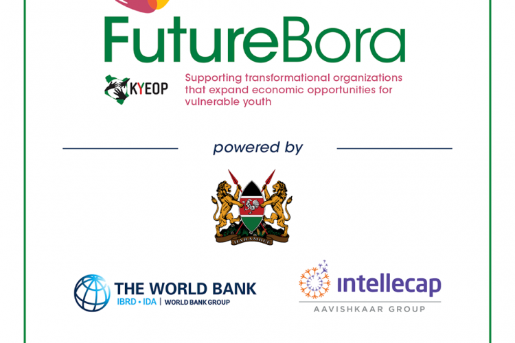 Get Up to KSH 40 million Grant Funding for Organizations in Kenya in the Future Bora Challenge 2020